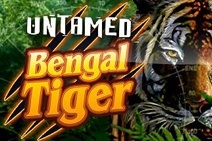 Untamed Bengal Tiger machine a sous