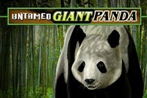 Untamed Giant Panda machine a sous